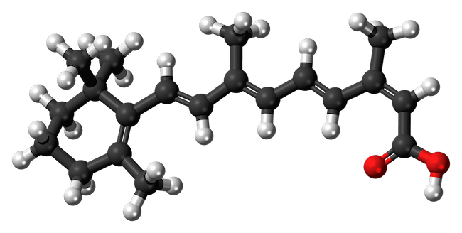 molecola isotretinoina