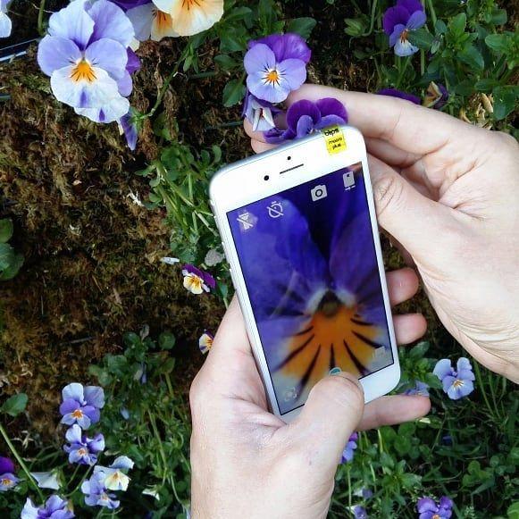 Blips lenti adesive per smartphone