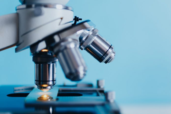 Autoanticorpi: esame di laboratorio