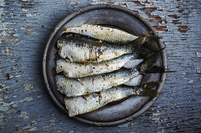 sardine-omega-3