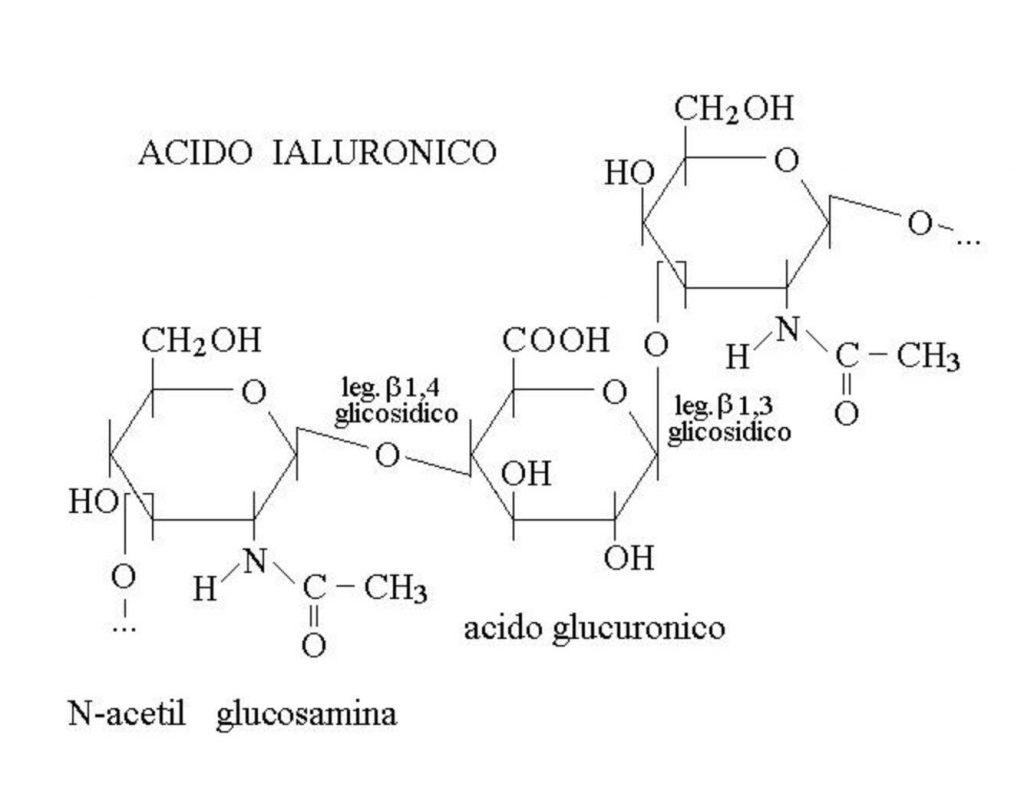 acido-ialuronico-molecola